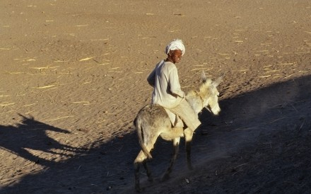 Man On Donkey Nuri Sudan