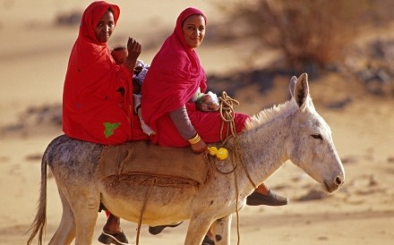 Women On Donkey Al Kab 2
