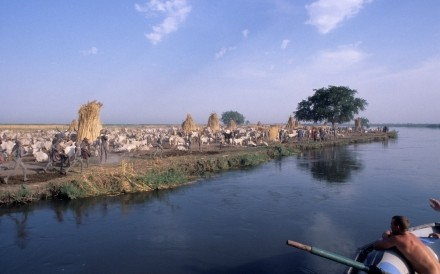 Mandari Cattle Camp Nile Sudan